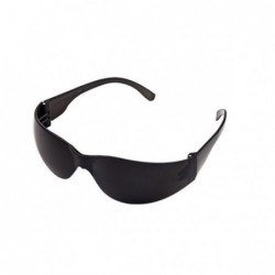 Óculos de Proteção Delta Plus Summer Fumê